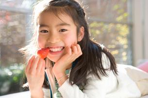 苺を食べる少女の写真素材 [FYI02640674]