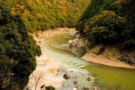 秋の桂川渓流の流れの写真素材 [FYI02641528]