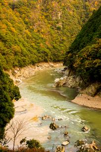 秋の桂川渓流の写真素材 [FYI02641535]