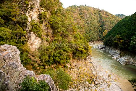 秋の桂川渓流の写真素材 [FYI02641774]
