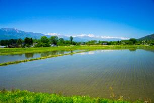 安曇野田園風景と北アルプス連峰の写真素材 [FYI02641957]