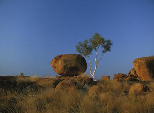 デビルズマーブルの奇岩と青空の写真素材 [FYI02642135]