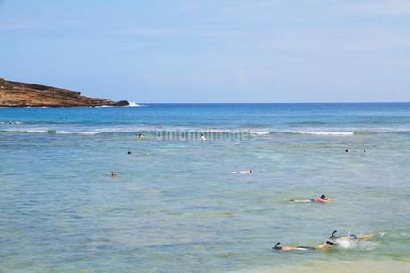 ハナウマ湾でシュノーケリングをする人々の写真素材 [FYI02642254]