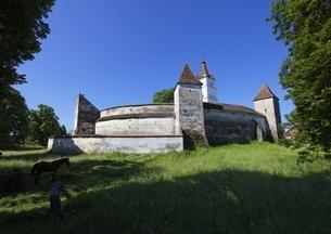 fortified church, Harman (Honigberg), Transylvaniaの写真素材 [FYI02642296]