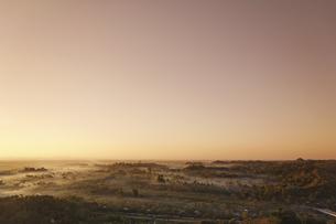 夕暮れの密林の写真素材 [FYI02642335]