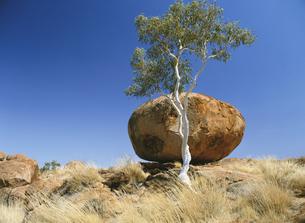 デビルズマーブルの奇岩と青空の写真素材 [FYI02642464]