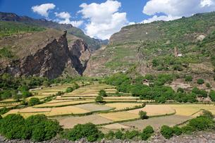 チベット族の村の写真素材 [FYI02642772]