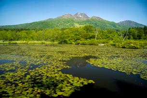 妙高山といもり池の写真素材 [FYI02642862]