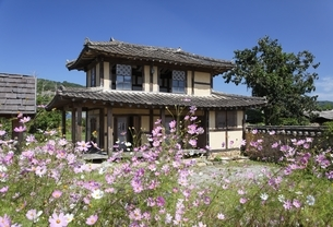 traditional house, cosmos flowersの写真素材 [FYI02643037]