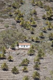 solitary houseの写真素材 [FYI02643188]