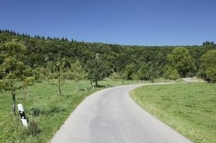 road, nature reserve 'Eselsburger Tal', Swabian Alpsの写真素材 [FYI02643192]