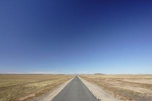 road, grassland, near Shangdu, Inner Mongolia, Chinaの写真素材 [FYI02643215]