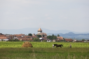 village, fortified church, men, field work, horse, Drauseniの写真素材 [FYI02643242]