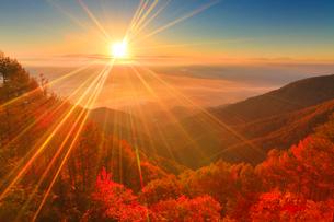 八ケ岳と南アルプスなどの山並みと雲海と朝日の写真素材 [FYI02643648]
