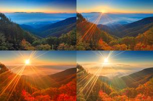 八ケ岳と南アルプスと富士山などの山並みと雲海と昇る朝日の写真素材 [FYI02643850]