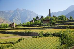 チベット族の村と望楼の写真素材 [FYI02643940]
