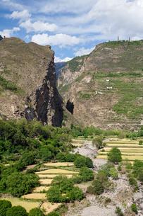 チベット族の村の写真素材 [FYI02644043]