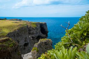 沖縄万座毛断崖像の鼻とエメラルドグリーン海の写真素材 [FYI02644108]