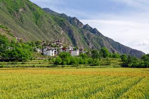 チベット族の村の写真素材 [FYI02644346]