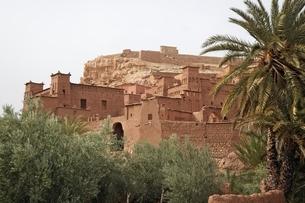 kasbah' (fortified houses)の写真素材 [FYI02644385]