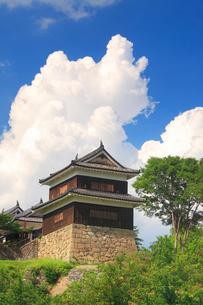 上田城の南櫓と入道雲の写真素材 [FYI02644515]