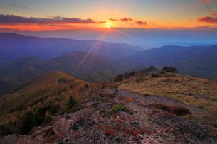 高山植物とカラマツ林の紅葉と乗鞍岳に沈む夕日の写真素材 [FYI02644717]