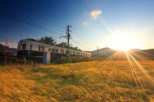 別所線の7253編成の丸窓電車と夕日と田園の写真素材 [FYI02644878]