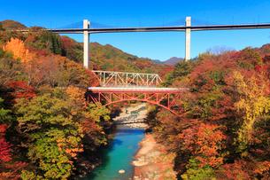 紅葉の吾妻渓谷と千歳新橋と八ッ場大橋,下流方向を望むの写真素材 [FYI02645039]
