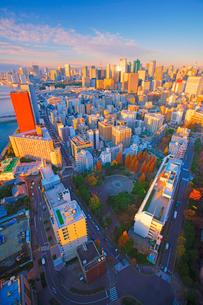 明石町から望む西南西方向のビル群と東京タワーと朝日の反射の写真素材 [FYI02645060]
