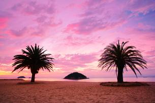 小部ビーチとナツメヤシと夕焼けと小島の写真素材 [FYI02645298]