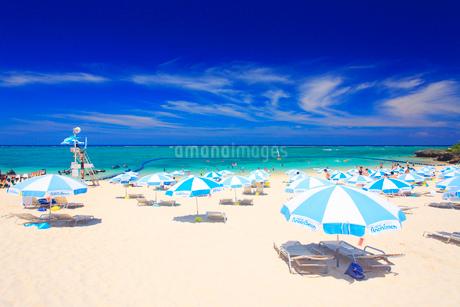 ビーチパラソルが並ぶビーチの写真素材 [FYI02645395]