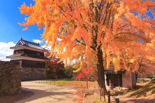 上田城の西櫓とイチョウの紅葉の写真素材 [FYI02645473]