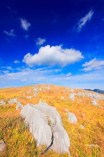 草紅葉とカルスト台地の石灰岩とわた雲の写真素材 [FYI02646096]
