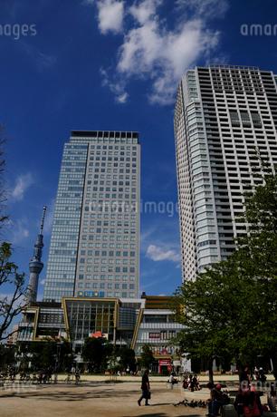 錦糸公園とオリナスタワーの写真素材 [FYI02646198]