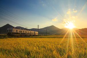 別所線の7253編成の丸窓電車と夕日と田園の写真素材 [FYI02646381]