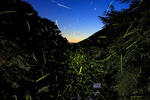 中山地区ホタルの郷と宵の明星の写真素材 [FYI02646643]