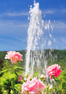花の庭の噴水とクロードモネの写真素材 [FYI02646702]