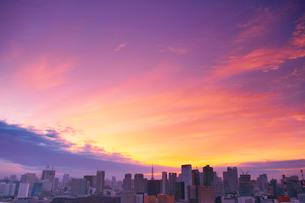 明石町から望む西南西方向のビル群と東京タワーと夕焼けの写真素材 [FYI02646775]