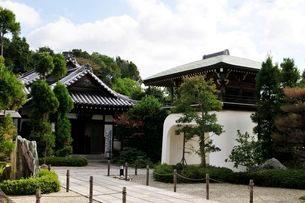 弁財天智禅寺の境内の写真素材 [FYI02646891]