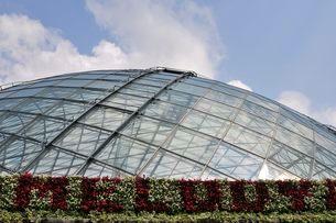 とっとり花回廊 園内フラワードームの写真素材 [FYI02646928]