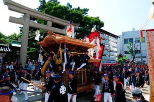 岸和田だんじり祭り宮入りの写真素材 [FYI02646930]