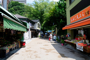 新緑の箕面の滝街道お土産店の風景の写真素材 [FYI02646948]