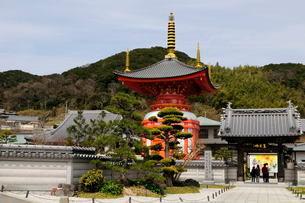 連台山 八浄寺の風景の写真素材 [FYI02647017]
