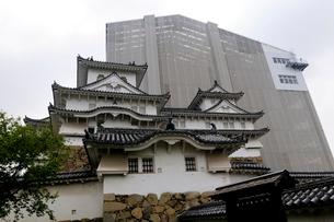 姫路城西の丸から見た大天守保存修理の風景の写真素材 [FYI02647030]
