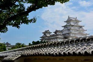 姫路城大天守閣と乾・西小天守の写真素材 [FYI02647039]