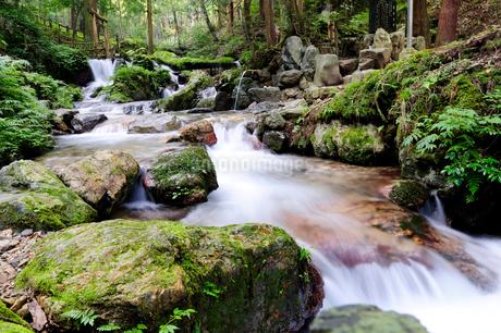 水の森瓜割の滝風景の写真素材 [FYI02647066]