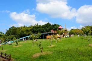 神戸フルーツ・フラワーパーク果樹園の風景の写真素材 [FYI02647069]