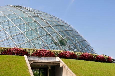 とっとり花回廊 園内フラワードームの写真素材 [FYI02647166]