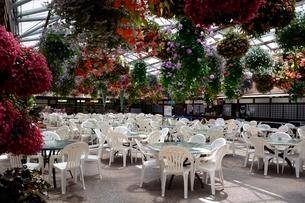 松江 フォーゲルパーク園内のセンターハウス休憩場所の写真素材 [FYI02647418]
