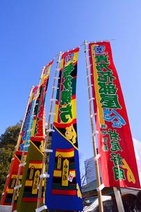 両国国技館前の相撲旗の写真素材 [FYI02647419]